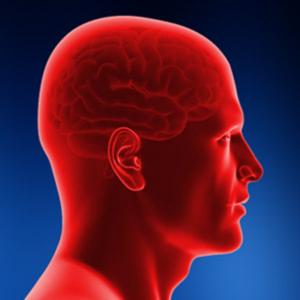 brain head injury image